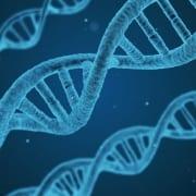 Vetenskap - FAQ